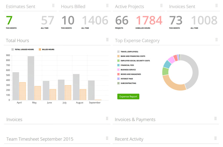 KPIs and detailed company data on one screen